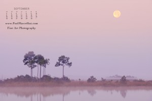 Moonset over Pine Glades