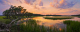 cedar, sunset, marsh, little talbot state park, florida, nature, photography