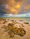 Bahia Honda State Park, Florida Keys, keys, florida, south florida, nature, photography