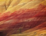 Painted Hills, John Day Fossil Beds, Oregon, layer