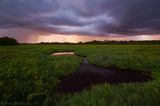 storm, sunset, saltmarsh, Everglades National Park, Florida, nature, photography, florida national parks