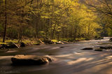 Great Smoky Mountains National Park, Tennessee, stream