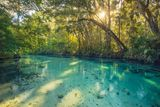 weeki wachee, florida, clear, spring