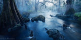 Hillsborough River State Park, Florida, misty, UFHEALTH