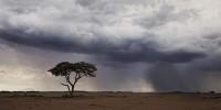 Stormy Amboseli print