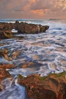 Coral Cove print
