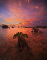 Sugarloaf Sunset print