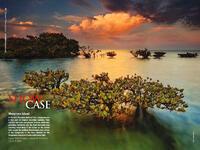 Mangrove Magic in Outdoor Photographer