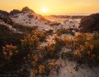 Sand Dune Sunset print