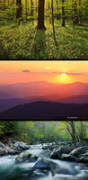 Smokies Desktop Download 3 - Pack