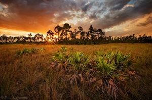 everglades, pinelands, sunset, storm, Florida, nature, photography, florida national parks