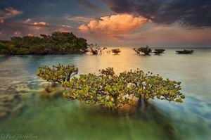 mangrove, biscayne national park, sunset, thunderstorm, atlantic ocean, awarded, florida, south florida, nature, photography,