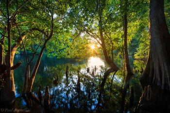 santa fe, river, florida, sunset, nature, photography