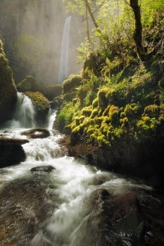 Columbia River Gorge, Oregon, elowah falls, misty