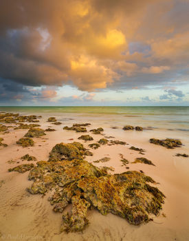 Bahia Honda State Park, Florida Keys, keys, florida, south florida, nature, photography
