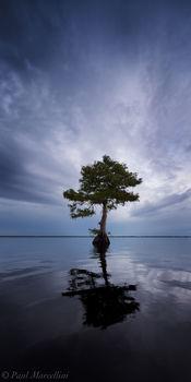 Blue Cypress Lake, Indian River County, Florida, panorama, blue, south florida, nature, photography