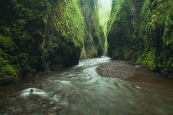 Oneonta Gorge, Columbia, River, Gorge, Oregon, canyon