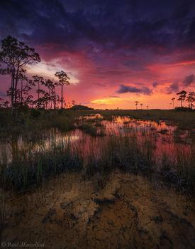 Everglades National Park, Florida, pineland, sunset, rocky pinelands, nature, photography, florida national parks