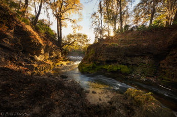 Suwannee River, Florida, creek