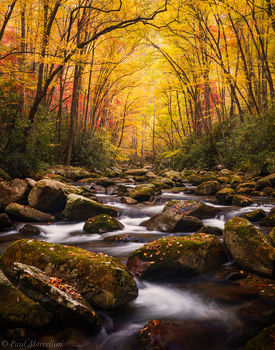 Great Smoky Mountain National Park, Tennessee, smokies