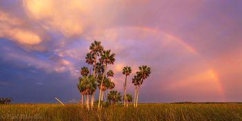 Chassahowitzka National Wildlife Refuge, Florida, rainbow, marsh, sunset