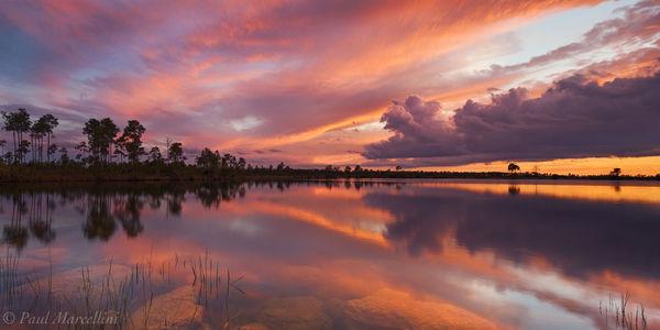 Pine Glades, Lake, Everglades National Park, Florida, sunset, nature, photography, florida national parks