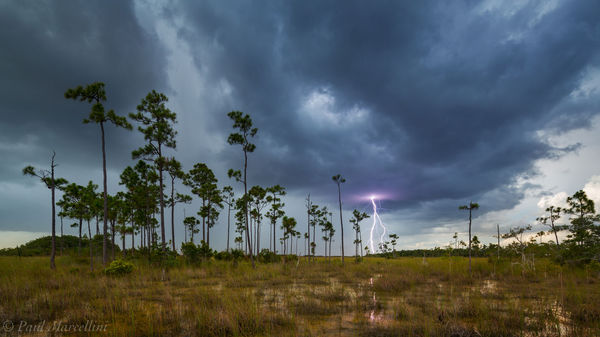 pinelands, everglades, lightning, florida, nature, photography, florida national parks
