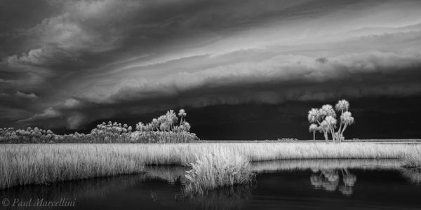 Chassahowitzka National Wildlife Refuge, Florida, storm, salt marsh