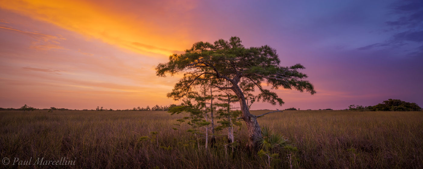 Pa-hay-okee, Everglades National Park, Florida, sunset, prairie, cypress, nature, photography, florida national parks, photo