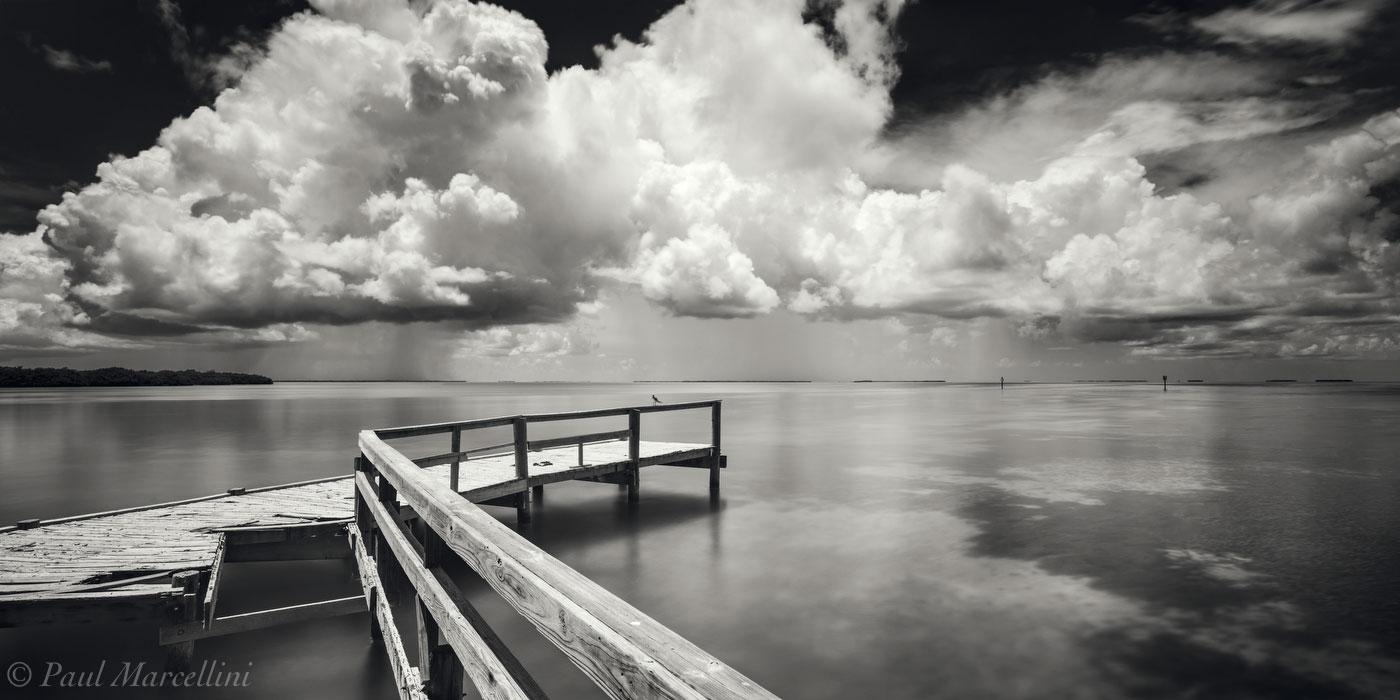 florida, nature, photography, photo