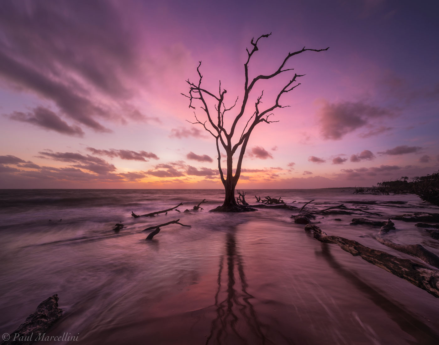 Big Talbot State Park, Florida, boneyard beach, big talbot, nature, photography, photo