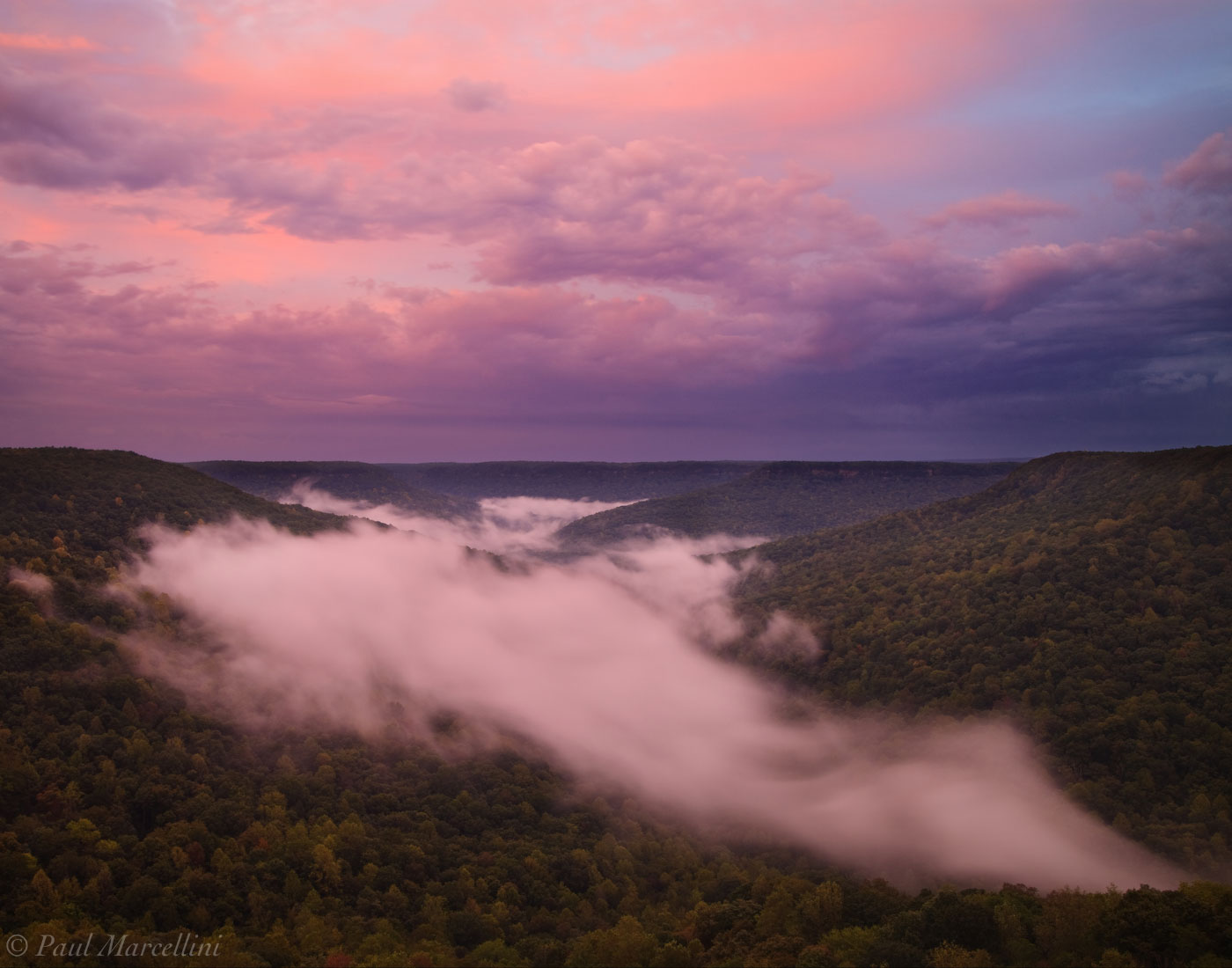 South Cumberland State Park, Tennessee, savage gulf, sunset, fog, photo