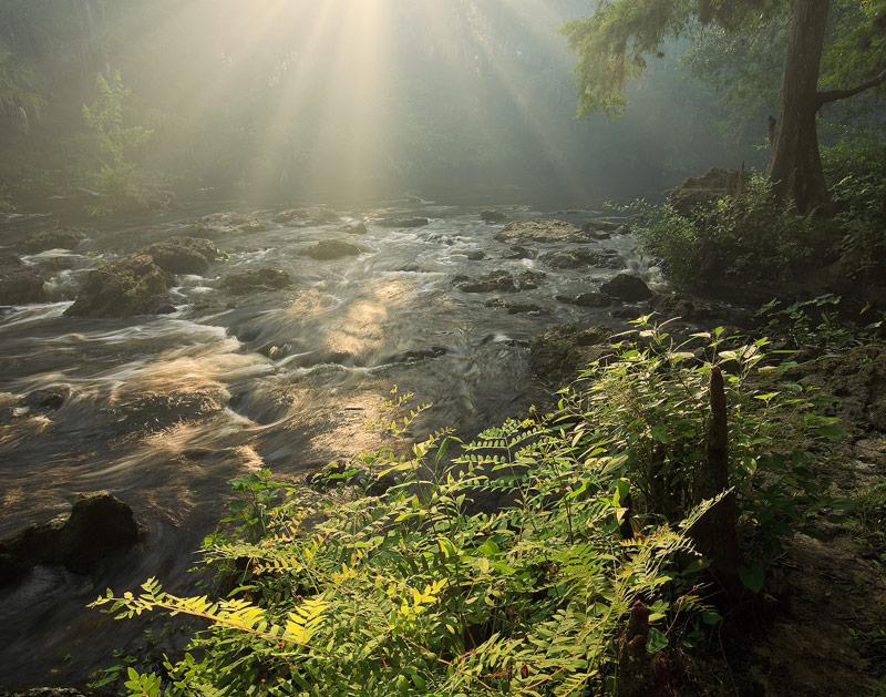 hillsborough, river, rapids, fog, florida, south florida, nature, photography, photo