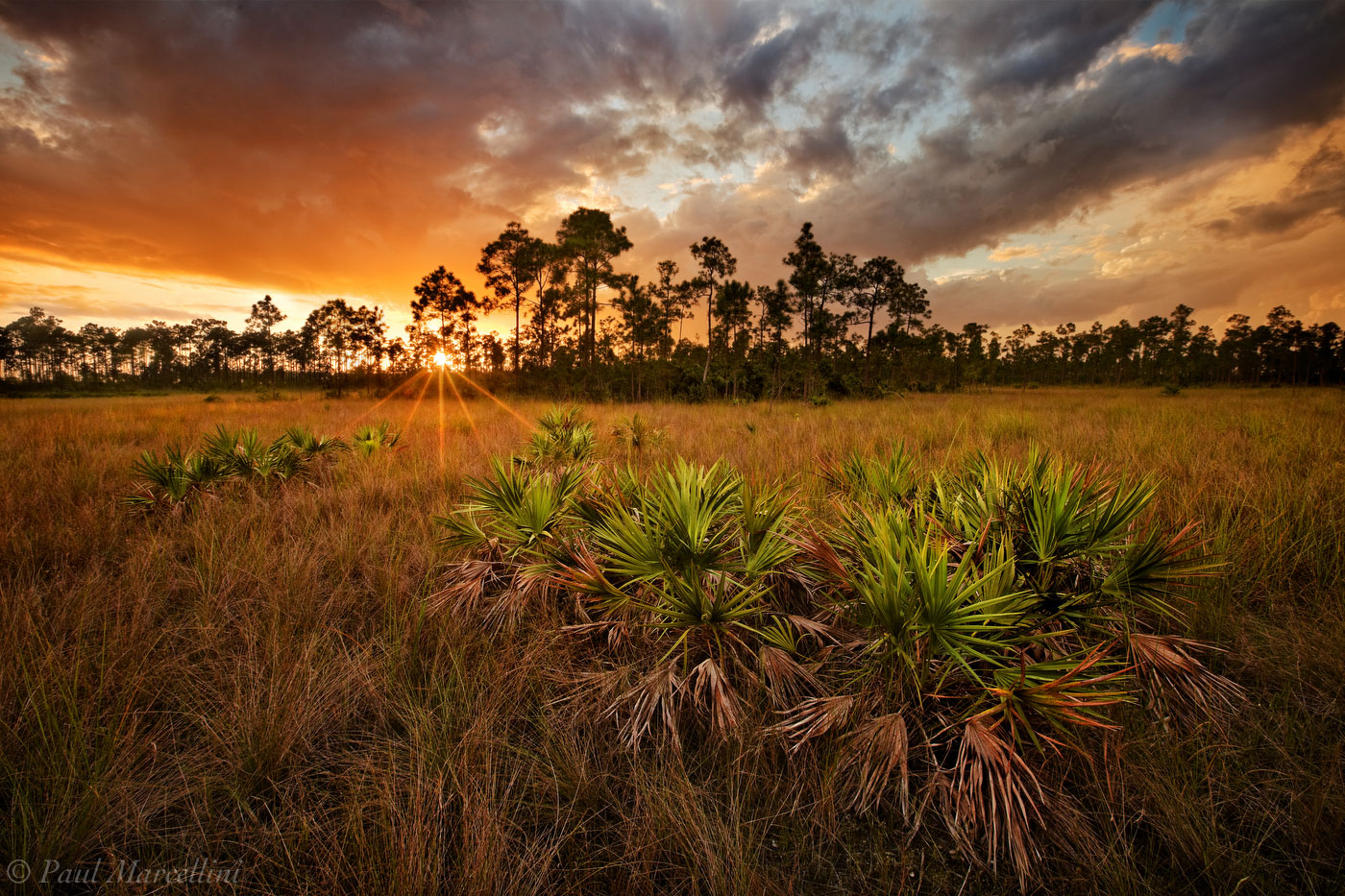 everglades, pinelands, sunset, storm, Florida, nature, photography, florida national parks, photo