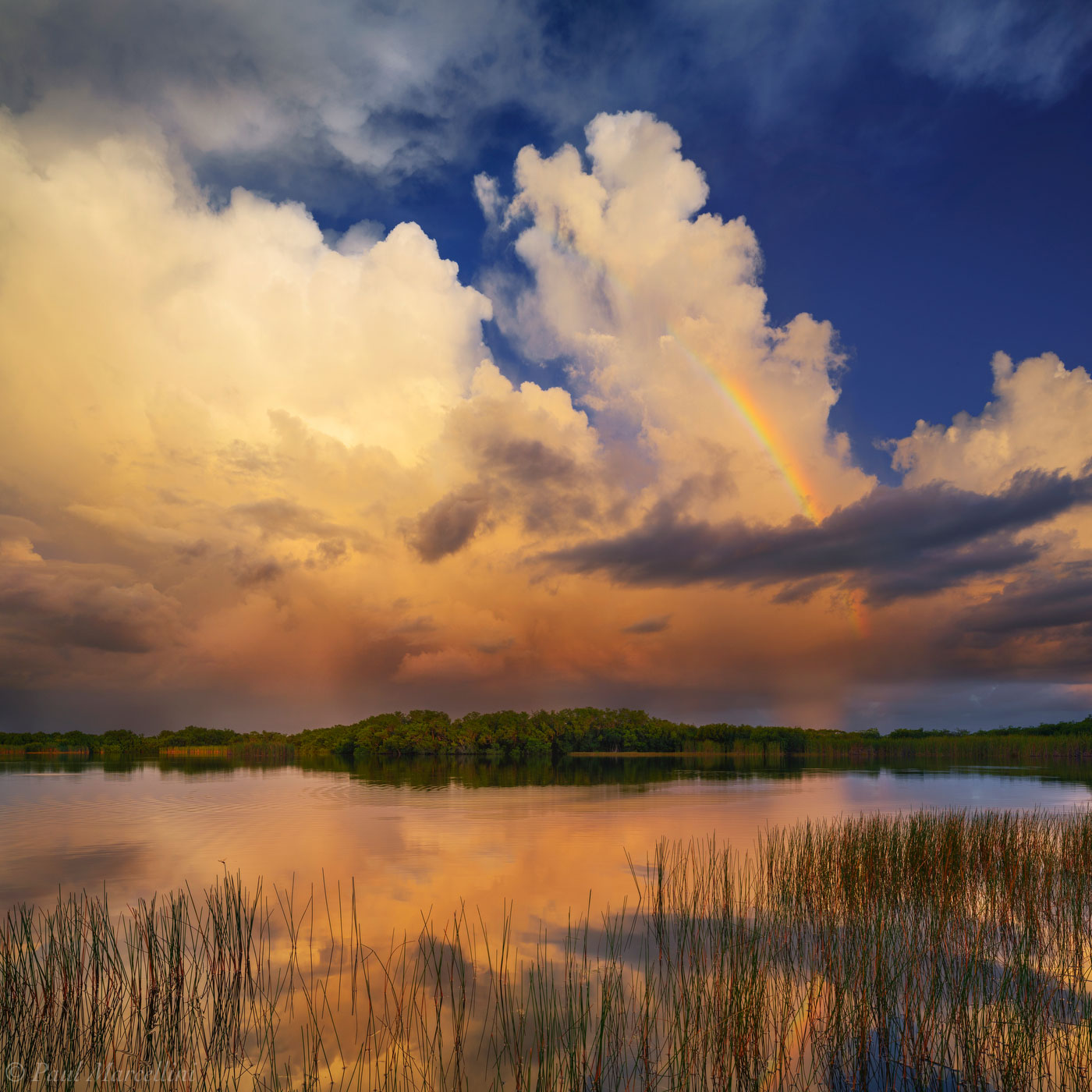 A rainbow and storm clouds over Nine Mile Pond.