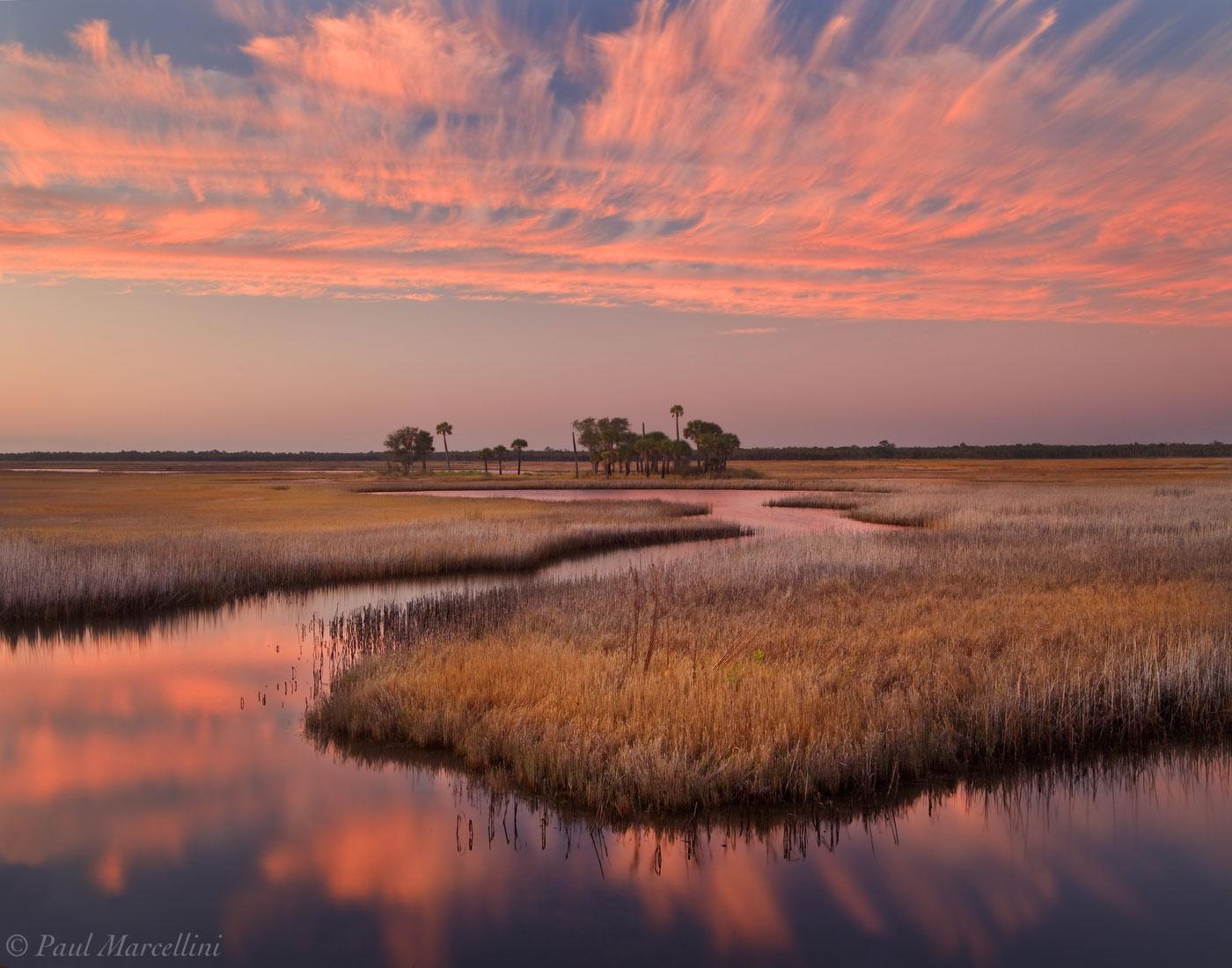Econfina River, Nature Coast, Florida, tidal, stream, salt marsh, north florida, nature, photography, photo
