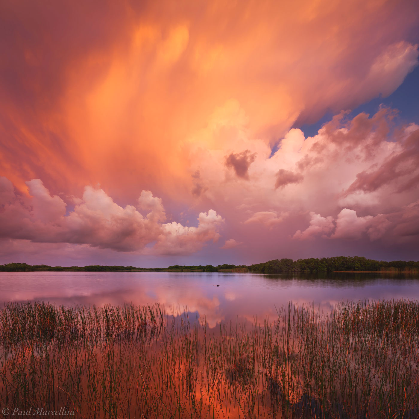 Nine Mile Pond, Everglades National Park, Florida, sunset, nature, photography, florida national parks, photo