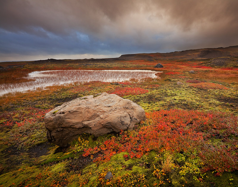 Mjl, iceland, fall, red, limited edition, landscape,M, photo