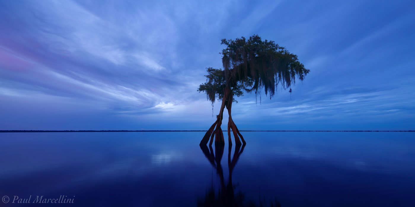 A blush of color breaks the hues of blue as sunset fades over Blue Cypress Lake.