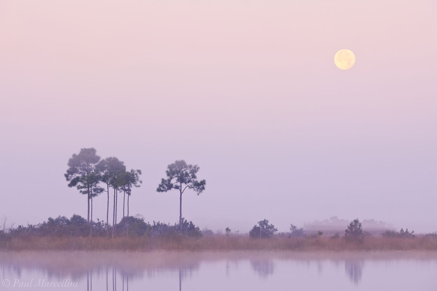 moon, sunrise, pine glades lake, everglades, Florida, nature, photography, florida national parks