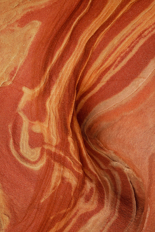 It wouldn't taste nearly as good, but this sandstone sure looked like a tasty strip.