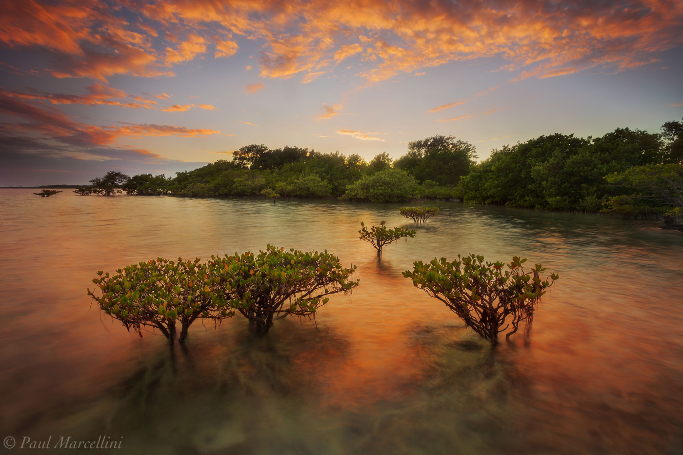 biscayne national park, mangroves, sunset, florida, nature, photography, photo
