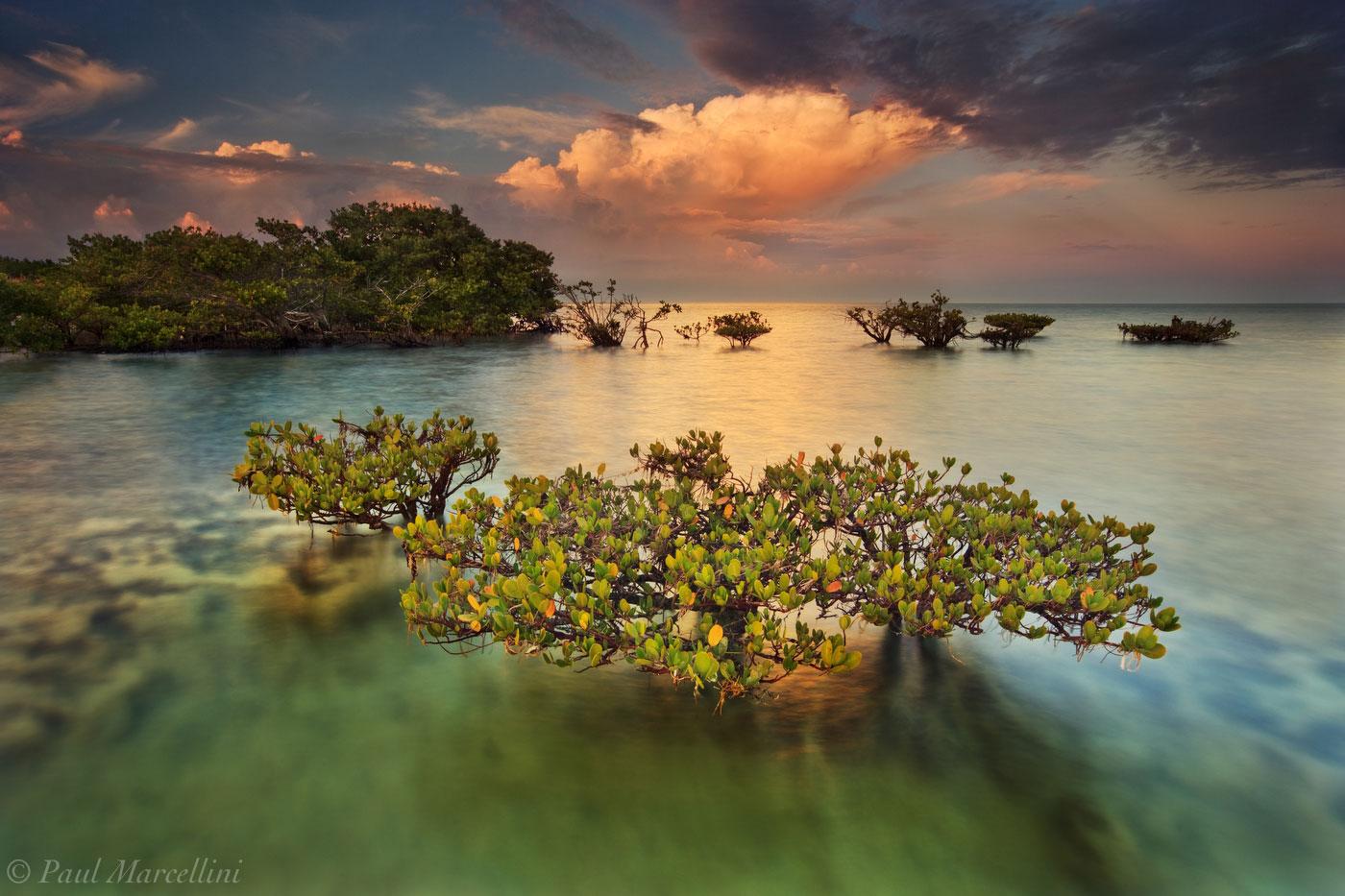 mangrove, biscayne national park, sunset, thunderstorm, atlantic ocean, awarded, florida, south florida, nature, photography, photo