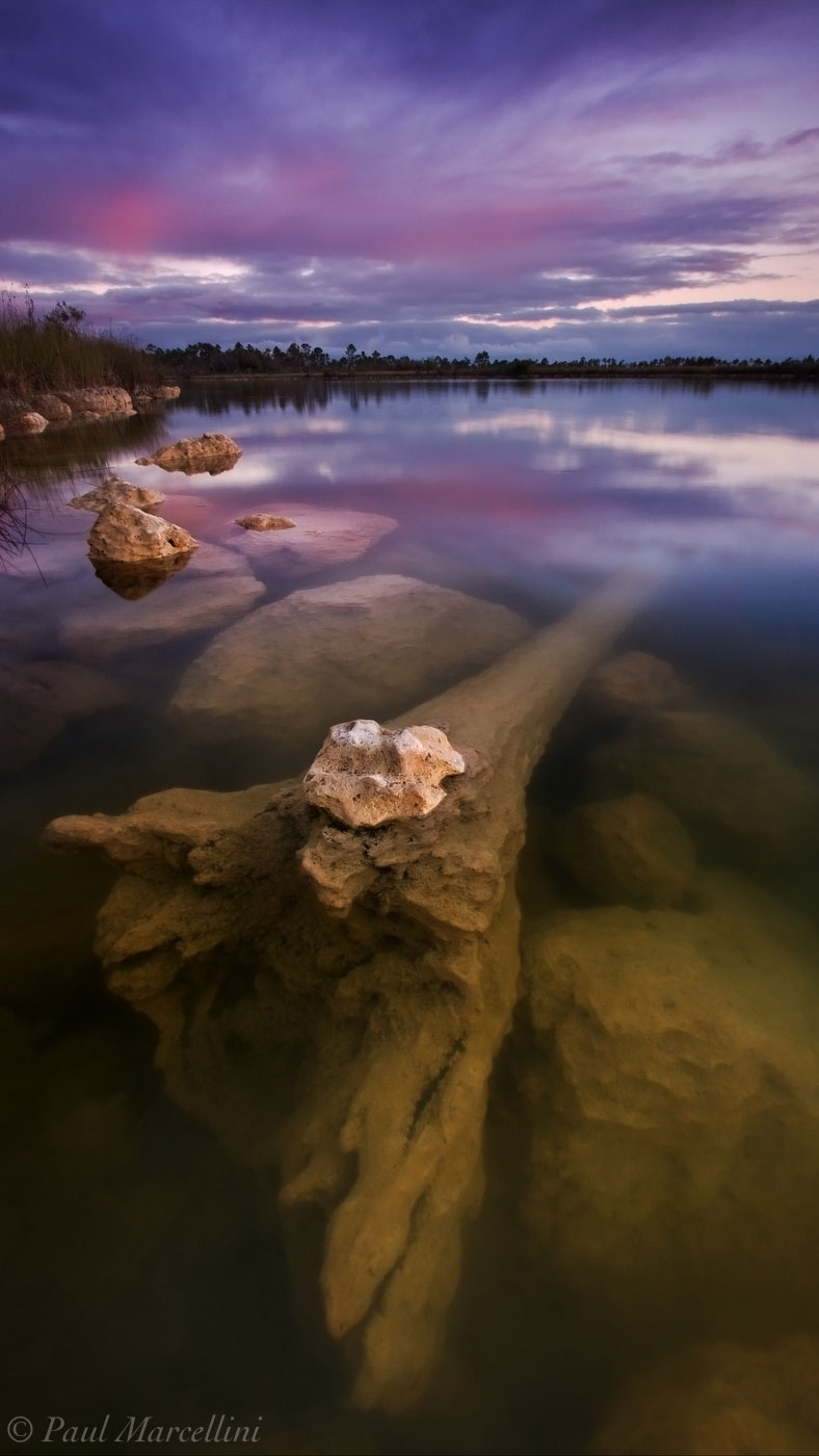 A sunken log fades off underwater and the light fades in the sky. A colorful sunset over a wonderful little lake in the Everglades...