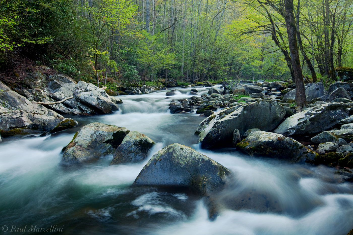 Great Smoky Mountains National Park, Tennessee, cascades, tremont, photo