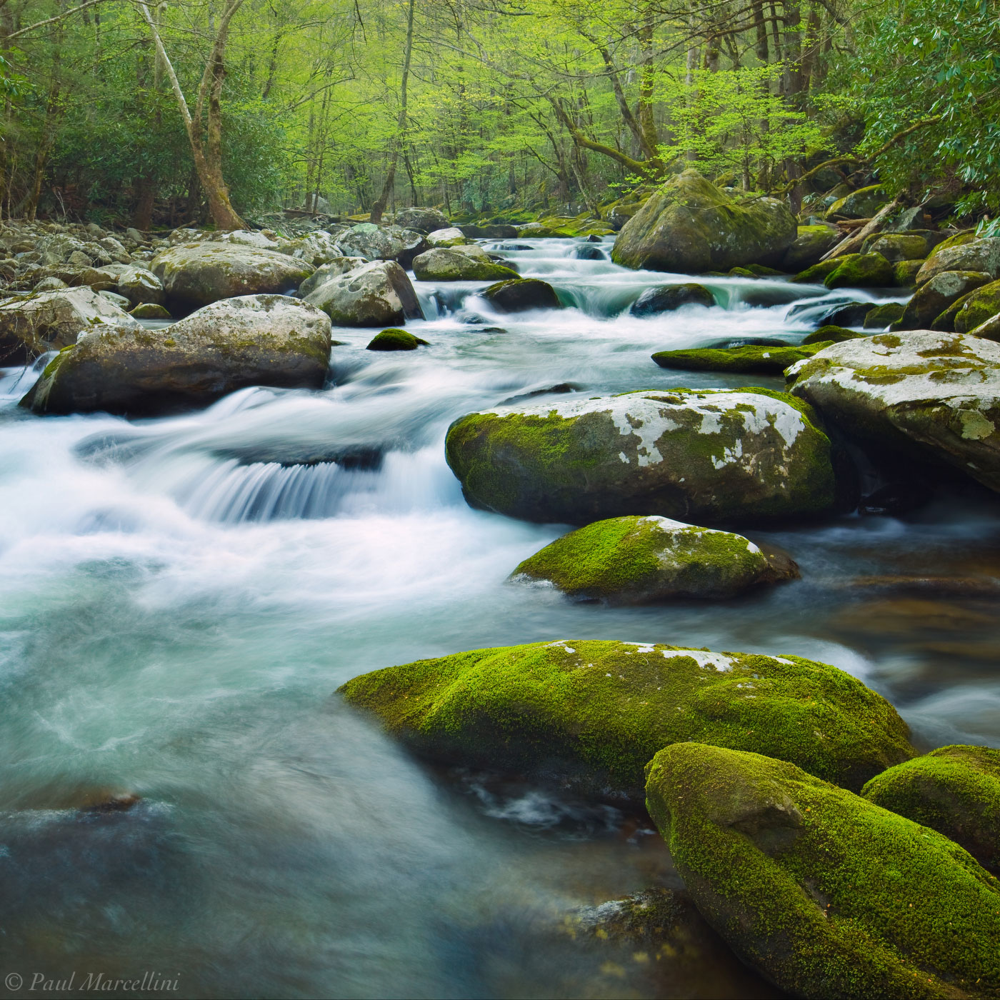 Great Smoky Mountains National Park, Tennessee, spring, cascade, photo