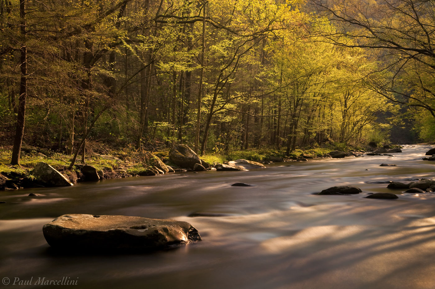 Great Smoky Mountains National Park, Tennessee, stream, photo