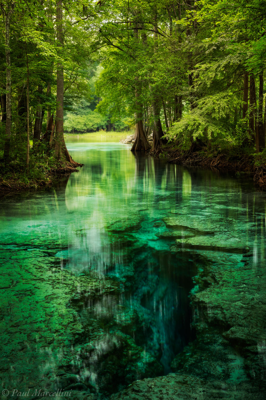 little devil spring, santa fe river, north florida, florida, spring, nature, photography, photo