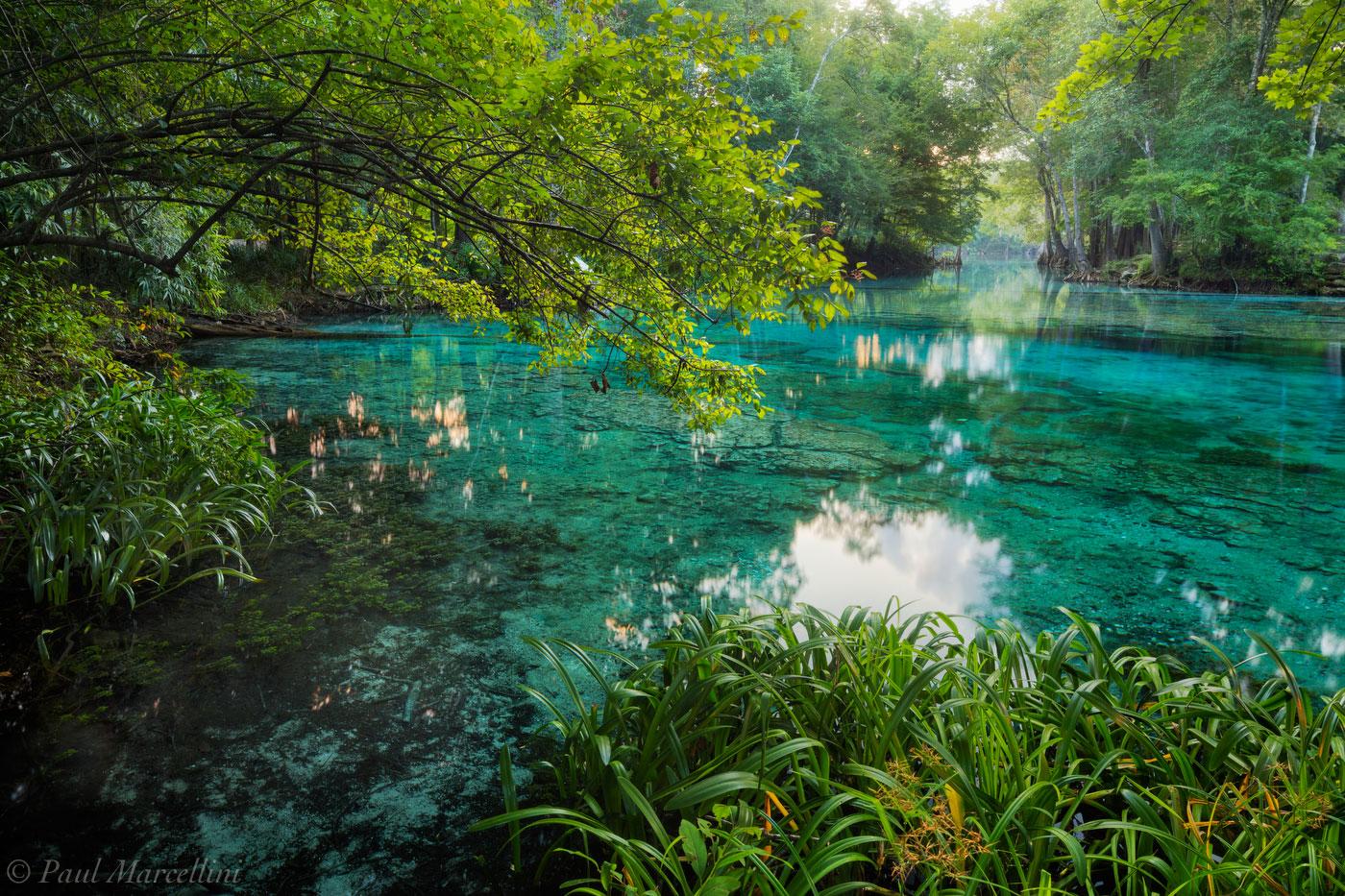 ginnie springs, sunrise, santa fe river, florida, nature, photography, photo