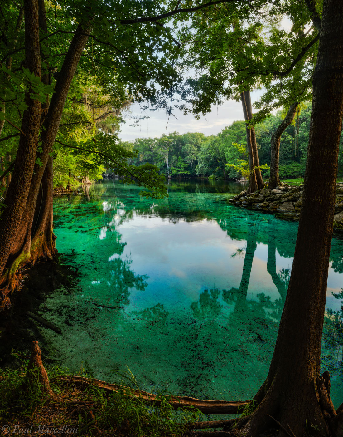 devil's eye spring, santa fe river, florida, spring, nature, photography, photo